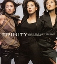Just the way to love/TRINITY