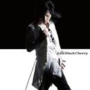 愛してない/Acid Black Cherry