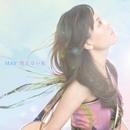 消えない虹/MAY