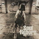 Soul Reborn/BETCHIN'