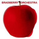 Vol.0/Bradberry Orchestra