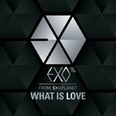 The 1st Prologue Single 'WHAT IS LOVE'/EXO-K