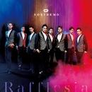 Rafflesia/SOLIDEMO