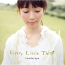 Landscape/EVERY LITTLE THING