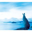 Sign Music/島谷ひとみ