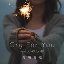 Cry For You feat.JUNK1 for 4D/馬場竜也