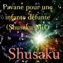 Pavane for a dead princess (Shusaku Mix)/Shusaku