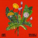 Bulding A Beginning/Jamie Lidell