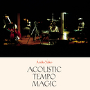 Acoustic Tempo Magic/安藤裕子