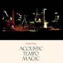 Acoustic Tempo Magic/安藤裕子