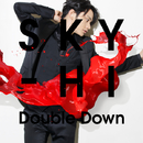 Double Down/SKY-HI(日高光啓 from AAA)