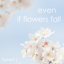 Even If Flowers Fall/forest L