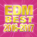 EDM BEST 2016-2017/V.A.