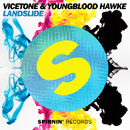 Landslide/Vicetone & Youngblood Hawke