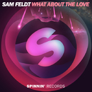 What About The Love - Single/Sam Feldt