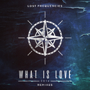 What Is Love 2016 Remixes/Lost Frequencies