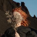 Silver Eye/Goldfrapp