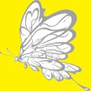 Hard Papillon/野林春男