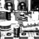Electronicity/渋谷美津男