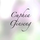 Cuphea Ginseng/Cymbidium Hematite