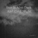 Star Is Also Dark And Cold Night/forest L