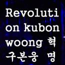 Revolution/ku bon woong