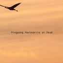 Pingpong Hackmanite at Dead/It Tulip