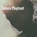 Tabaco Elephant/The Nineteen Sapodilla
