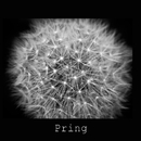 Winter night/Pring