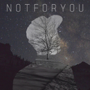 Not For You/Dirstroyer