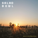 There's a something wrong…/Salad Bowl