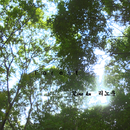 Forest/Rino ku