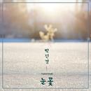 Snowflake/Park jin kyoung