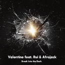 Break into the Dark/Valentine feat. Rui & Afrojack
