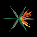 THE WAR (Chinese ver.) - The 4th Album/EXO-K