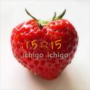 ストローク instrumental off vocal/15☆15