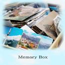 Memory Box/Elin Mary