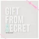 Gift From Secret/Secret