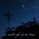 on moonlit night/Sure Tread