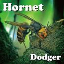 Hornet/Dodger