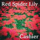 Red Spider Lily/Cashier