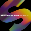 One More Day/Mr. Belt & Wezol, Aevion