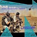 AFSOC(Special Tactics Command)/L.A.BROTHER