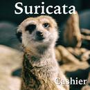 Suricata/Cashier