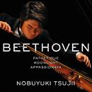 ベートーヴェン:<悲愴><月光><熱情>/辻井 伸行(ピアノ)