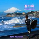 Spring storm (春の嵐)/Mario Takahashi