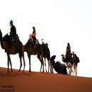 Morocco 11/PIANOBEBE