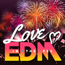 LOVE EDM -IN THE FES-/V.A.