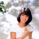 SKY PARK/河合奈保子