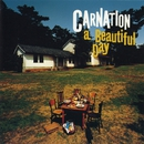 a Beautiful Day/Carnation